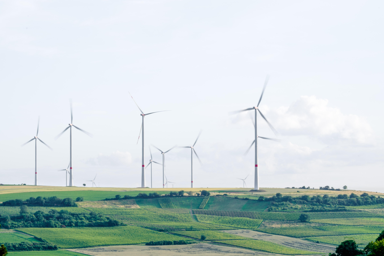 Umwelt- oder Klimaschutz? Wo ist da der Unterschied?